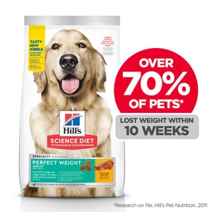 canine weight management